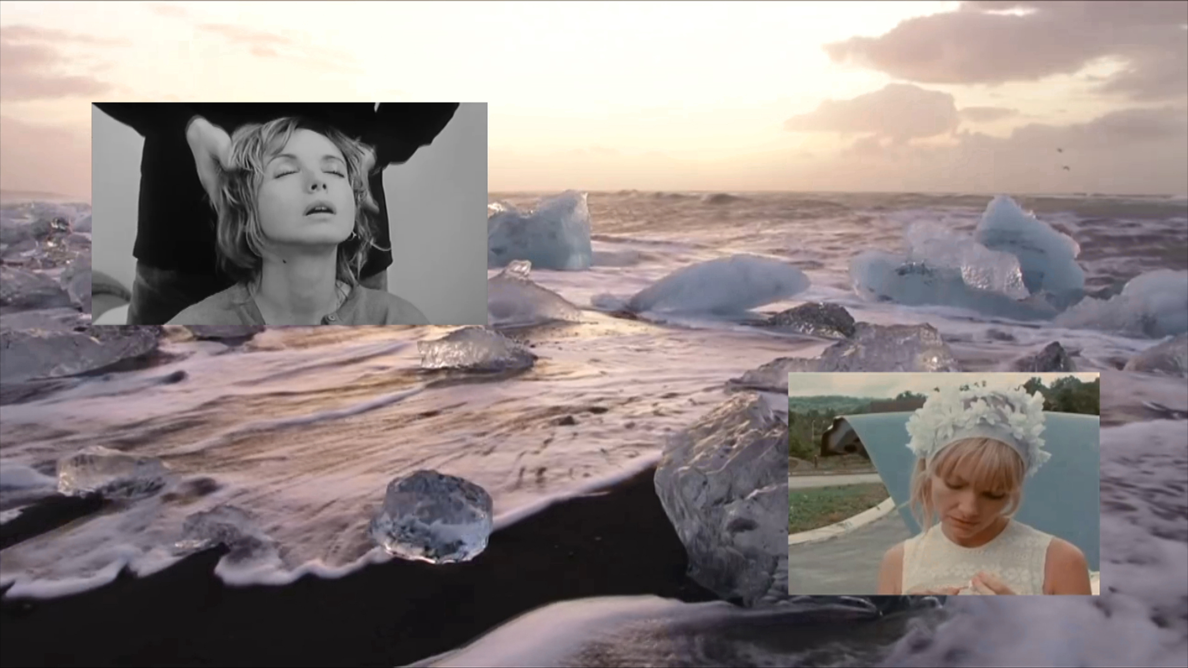 collage of images including jellyfish and Alexandra Bastedo